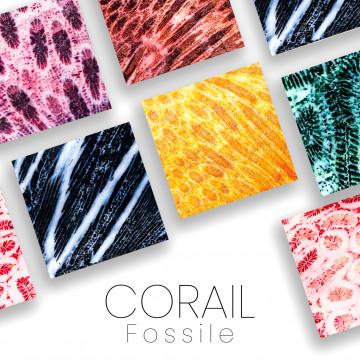 Corallo fossile per coltelli