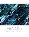 Abalone reconstituee