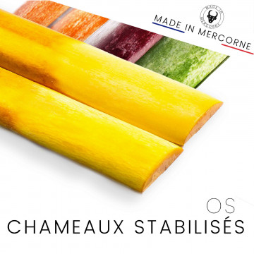 Ossa di cammello stabilizzate - stabilizzate e macchiate in Francia