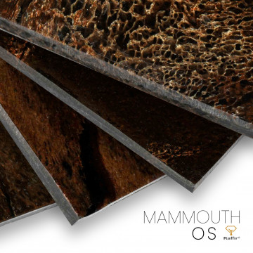 Stabilized mammouth bone
