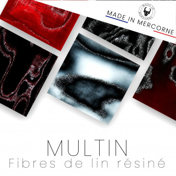 Multin - flax fibers resinated