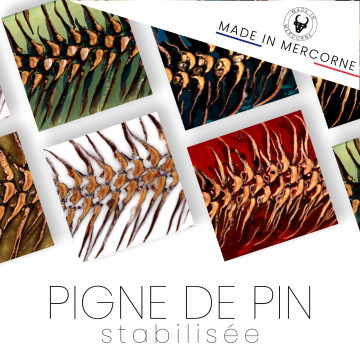 Resin pine cone - included in resin - Mercorne