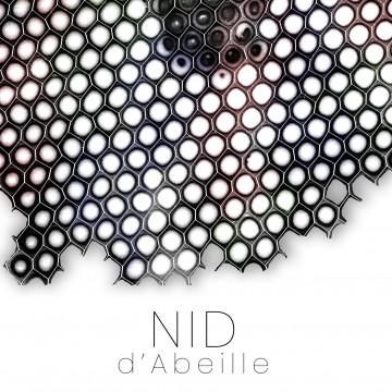 Nid d'abeille : Matériaux composites - résine / grille