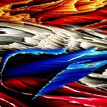 Stripes : vegetable fibers under resin