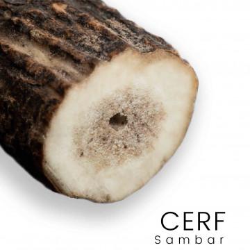 Cervo sambar - Manici, palchi, tronchi per coltelli