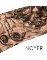Noyer